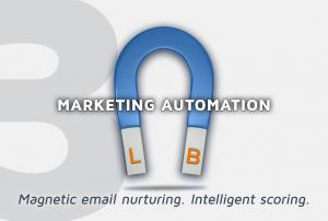 Financial Advisor Marketing Automation